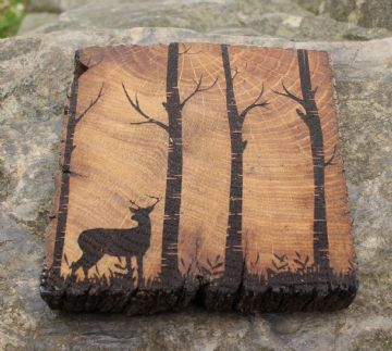 Mat Diod - Carw | Stag - Coaster